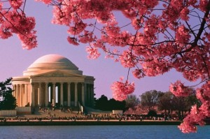 DC in the Spring